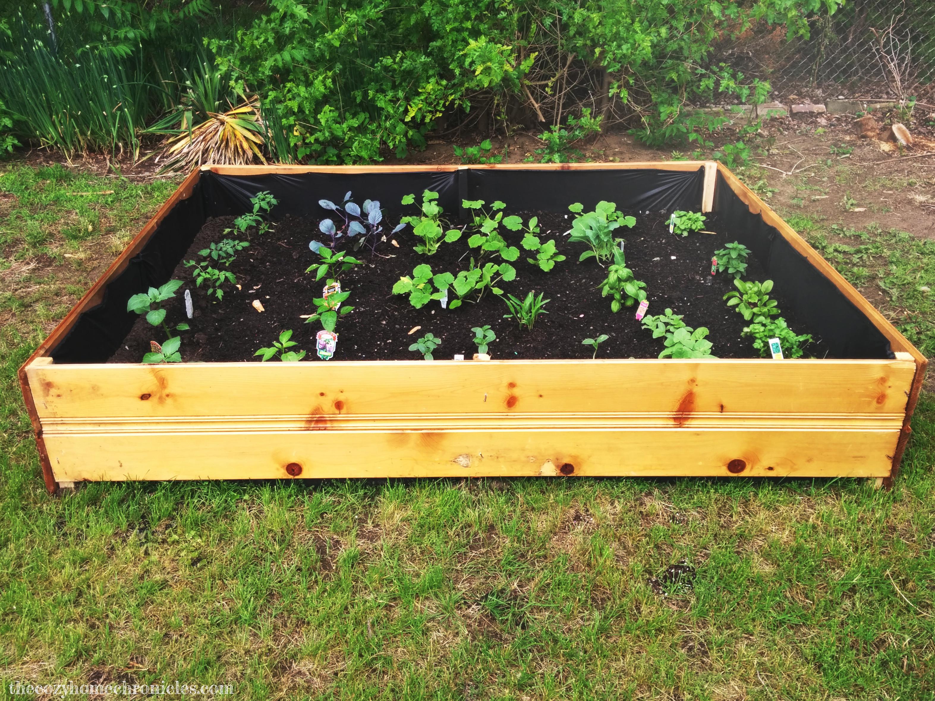 garden bed copy copy